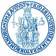 logo_unina_blu_ss_centrobianco